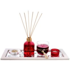 Scent Diffuser Gift Set
